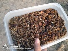 <h5>Llavors</h5><p>Barreja de llavors per al bosc d&#039;aliments</p>