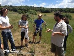<h5>Curs de fruiticultura ecològica</h5><p>Curs de 6 sessions, una mensual, de fruiticultura ecològica amb en Guillem Arribas.</p>