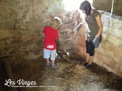 <h5>Netejant les quadres</h5><p>Alidé i Nael netejant les quadres després de molts anys sense fer-se</p>