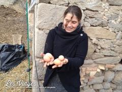 <h5>Primer ous</h5><p>Quin goig trobar els primers ous!</p>