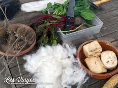 <h5>Treballant la llana</h5><p>Materials per netejar, cardar i tenyir la llana</p>