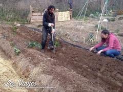 <h5>Dario i Elodie treballant a l&#039;hort</h5>