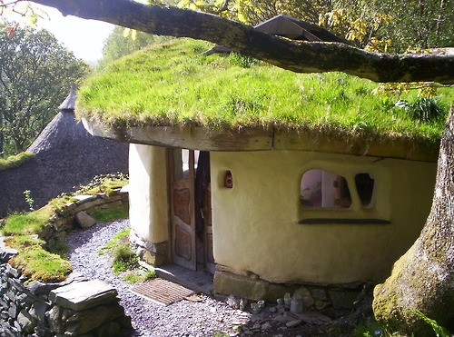 cob-home-living-roof