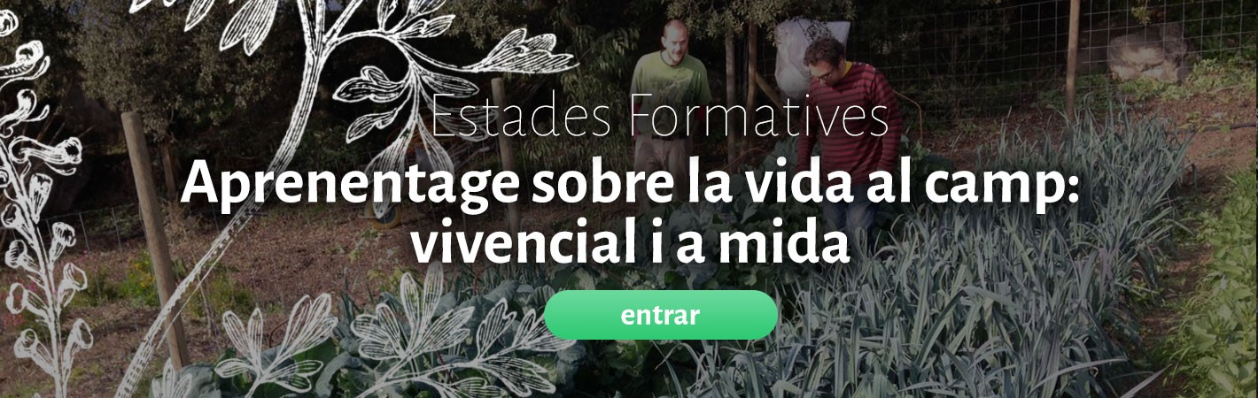 estades-formatives